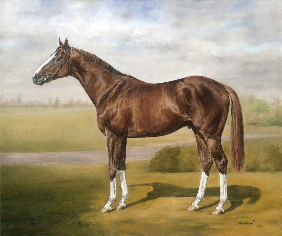 Imperiál-Dual Derby winner
